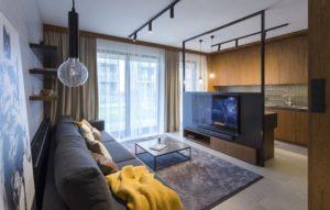 salon z kanapą, stolikiem i telewizorem, w tle aneks kuchenny