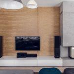 telewizor zwierzą stereo