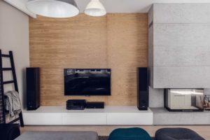 telewizor z wierzą stereo